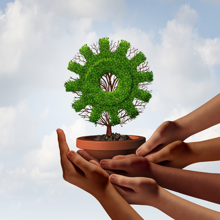 diverse business team: Diversity business growth and teamwork partnership as a group of diverse ethnic hands providing support to a tree shaped as a corporate industry gear symbol as a team cooperation metaphor with 3D illustration elements. Stock Photo