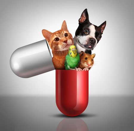 pet therapy: Pet medicine and animal prescription drugs as veterinary pharmaceutical therapy and vet medical concept as a giant pill with a dog cat hamster and bird emerging out of a capsule pill with 3D illustration elements, Stock Photo