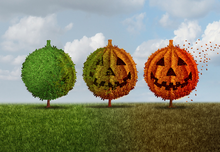 green lantern: Halloween season concept as a green tree transforming into an orange jack o lantern autumn leaves plant as a seasonal fall symbol for a festive celebration of trick or treat time and thanksgiving with 3D illustration elements.