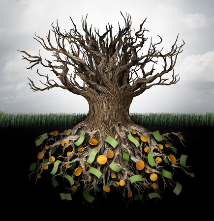 Hiding money and secret wealth business concept as an empty tree with currency and gold hiden in the underground roots as a financial metaphor to protect capital or avoid income tax with 3D illustration elements. Stock Photo