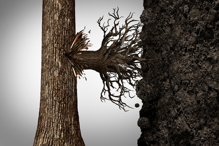 tree bark: Change strategy and modify business growth plan concept or find a new revenue source as a tree sprouting roots on the side of the bark to access vertical soil as a financial concept with 3D illustration elements.