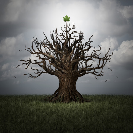 surreal: Concept of optimism as a tree in crisis with no leaves and one green leaf surviving as a business or psychological symbol of persistence and determination to have faith and never give up with 3D illustration elements. Stock Photo