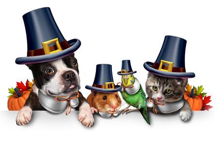 Thanksgiving huisdier viering als een leeg bord met een leuke kat gelukkige hond leuke hamster en Budgie elke dragen van een pelgrim hoed hoofd kledingstuk als een herfst seizoengebonden symbool voor grappige huisdieren in kostuum met 3D-illustratie elementen.
