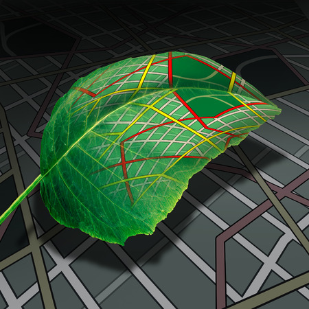 Ecology transportation and green energy transport and driving as a leaf with a generic road map texture as a clean natural fuel source metaphor in a 3D illustration style.