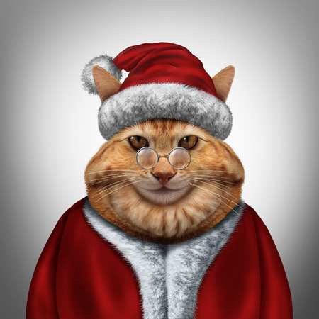 december holidays: Christmas cat wearing a red santa claus xmas costume as a festive winter celebration feline pet with 3D illustration elements.