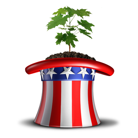 Concept of American growth and invest in the USA idea or social security in america symbol as a tree sapling growing inside a flag themed hat with 3D illustration elements.