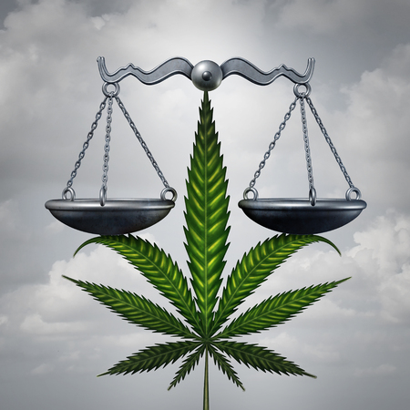 scale up: Marijuana law concept as a cannabis leaf holding up a justice scale as a medicinal or recreational drug legalization social issue symbol with 3D illustration elements.