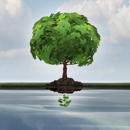 prediction: Business contraction concept or economic decline symbol as a mature tree casting a reflection in the water of a small young sapling with 3D illustration elements as a metaphor for downgrade or devaluation.
