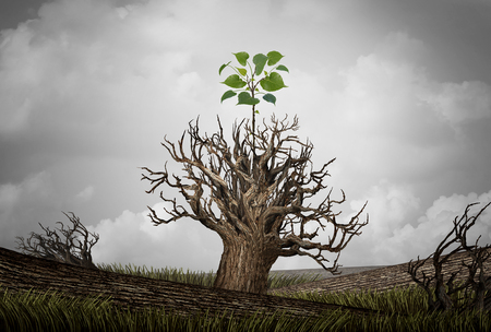 New beginning and the cycle of life concept of hope and recovery as a sapling plant growing from a dead tree as a psychology of a start or young business determination to succeed with 3D illustration elements.