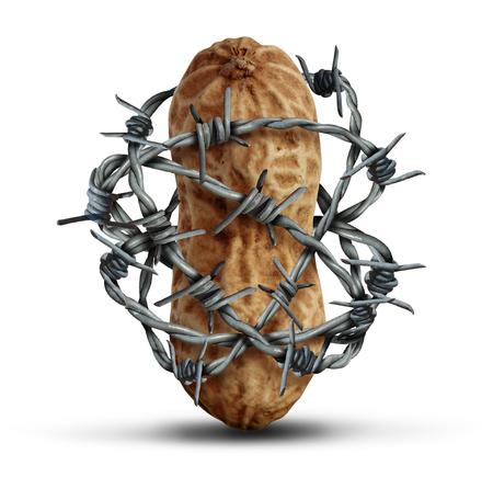 intolerancia: Prevención de alergias de alimentos y frutos secos y otros ingredientes evitando riesgo alérgicas advierten como un cacahuete envuelto en alambre de púas como un símbolo para la protección de la salud y la seguridad en un estilo de ilustración 3D sobre un fondo blanco.