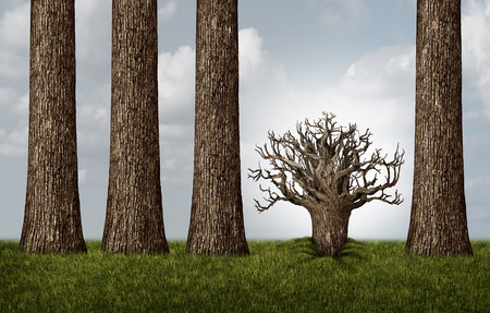 Opposite thinking and reverse concept as a group of tall trees and one plant trunk upside down exposing roots as a business metaphor with 3D illustration elements.