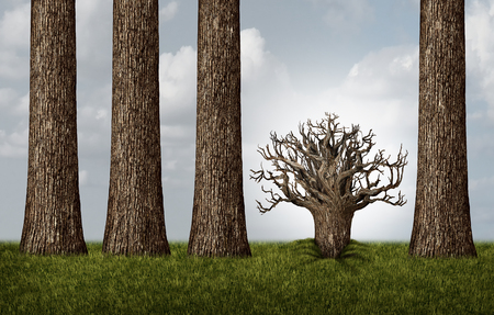 business metaphor: Opposite thinking and reverse concept as a group of tall trees and one plant trunk upside down exposing roots as a business metaphor with 3D illustration elements.