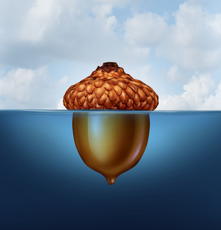 Hidden savings concept as an acorn nut with the top part floating above as an island above water and the rest under the sea as a financial prosperity rainy day fund symbol in a 3D illustration style.