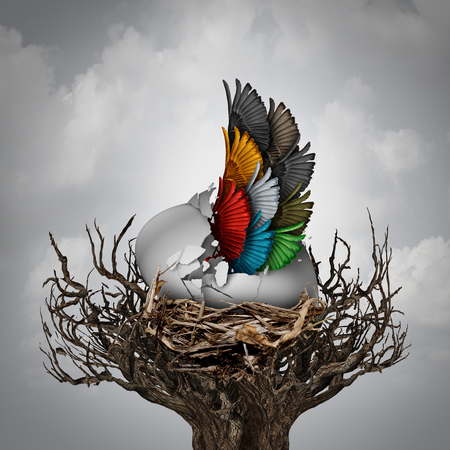 Group start concept and small business incubator and startup idea as an egg cracking open with a team of bird wings shaped as one wing as a metaphor for early company growth through cooperation and partnership with 3D illustration elements.
