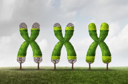 Crecimiento telomérico y longitud más larga como un concepto médico de ADN como un árbol cromosómico con tapas de extremo en crecimiento como símbolo para el envejecimiento y la protección genética que resulta en vivir más tiempo o la longevidad con la ilustración 3D.