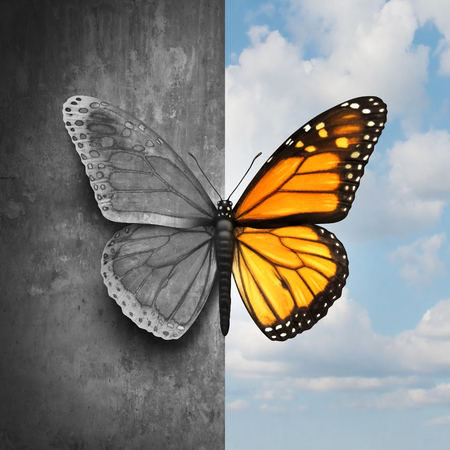 Bipolar mental disorder abstract psychological illness concept as a butterfly divided as one side in grey and sad colors with the other in full bright tones as a medical metaphor for psychiatric mood or feelings imbalance. Banco de Imagens - 76336617