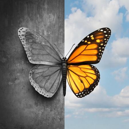Bipolare psychische Störung abstrakte psychologische Krankheit Konzept als Schmetterling geteilt als eine Seite in grau und traurig Farben mit dem anderen in voller hellen Tönen als medizinische Metapher für psychiatrische Stimmung oder Gefühle Ungleichgewicht. Standard-Bild