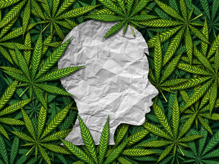 Marijuana and children or exposure to secondhand cannabis smoke in children as a group of weed leaves with a crumpled paper as a profile of a youth as as medical health risk symbol in a 3D illustration style.
