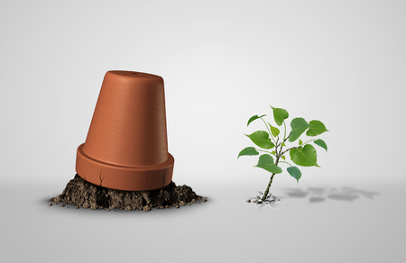 Persevere and powerful and power concept as an upside down flower pot with a sapling plant breaking through as an endurance and tenacity to persist and survive as asuccess idea with 3D illustration elements.