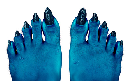 Monster blue feet as a creepy halloween or scary zombie symbol with textured skin and toes with hair and pimples on a foot isolated on a white background as a spooky design element in a 3D illustration style.