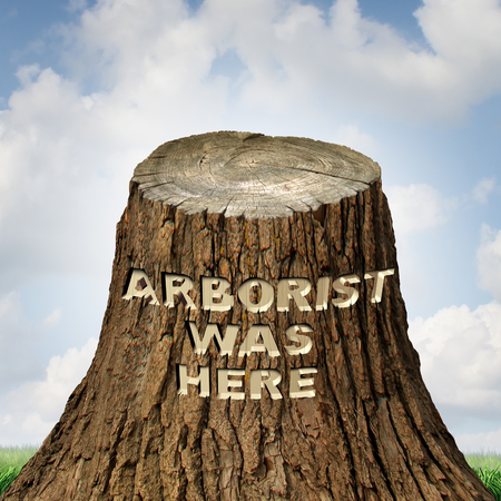 Arborist tree cutting and pruning professional concept as a cut trunk with text carved into the bark with 3D illustration elements.