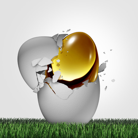 secretive: Wealth potential financial concept as a golden egg emerging out of an ordinary one as a business success metaphor for emerging markets or hidden money and tax shelter symbol with 3D illustration elements.