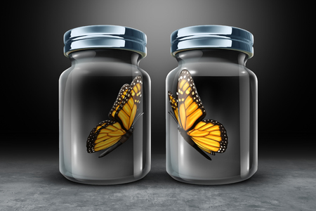 Barriers to communication and physical barrier concept as two butterflies in seperate closed glass as a jars as a 3D illustration. Фото со стока