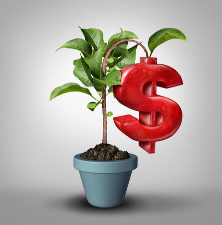 Money tree and fruitful investment business financial concept as a tree growing an apple shaped in a money symbol as a profitable finance icon with 3D illustration elements.
