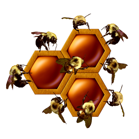 coordinated: Teamwork project concept as a group of working bees cooperating as a coordinated team constructing a gepometrical honey comb as a business partnership metaphor with 3D illustration elements.