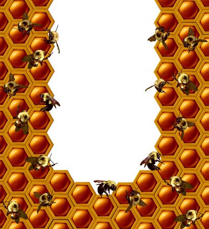Cadre de nid d'abeille avec un groupe d'insectes d'abeille travaillant sur un centre d'espace de copie isolé blanc avec éléments d'illustration 3D Banque d'images