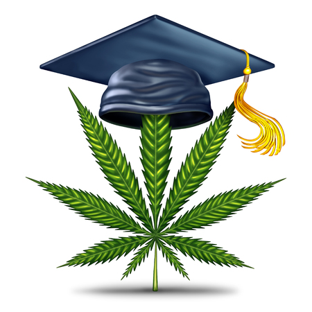 Marijuana education and cannabis information as a graduation mortar board with a green leaf as a medical weed or legal pot facts symbol with 3D illustration elements.