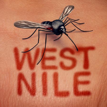 La enfermedad del virus del Nilo Occidental como una enfermedad transmitida por mosquitos como una mordedura en la anatomía humana con texto rojo en la piel como un síndrome de síndrome de infección médica en un estilo de ilustración 3D. Foto de archivo - 82744421