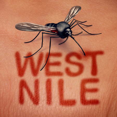 West-Nijl-virusziekte als een door muggen overgedragen ziekte als een beet op de menselijke anatomie met rode tekst op de huid als een medisch infectiesyndroomsymbool in een 3D-illustratiestijl.