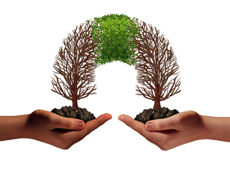 Growing a business partnership as two people holding struggling trees that connect together and new growth coming back as a collaboration success symbol in a 3D illustration style. Stock Photo