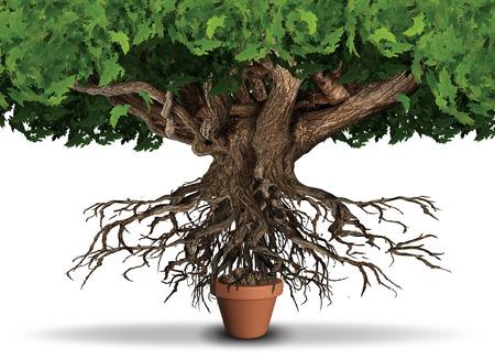 Concepto limitado de los negocios y de la economía de los recursos como árbol enorme y raíces que intentan conseguir los alimentos de un crisol pequeño de la planta como metáfora de la escasez con los elementos de la ilustración 3D.
