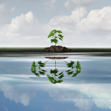 Future growth business concept as a sapling tree with a reflection of multiple plants as a symbol for expansion or growing corporate marketing symbol with 3D illustration elements. Stock Photo