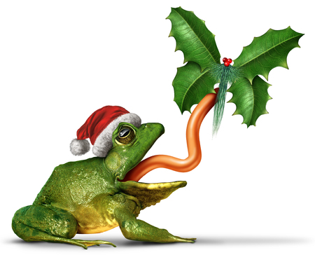 Christmas frog with a santa claus hat catching a holly leaf shaped as a butterfly with 3D illustration elements on a white background. Stock Photo