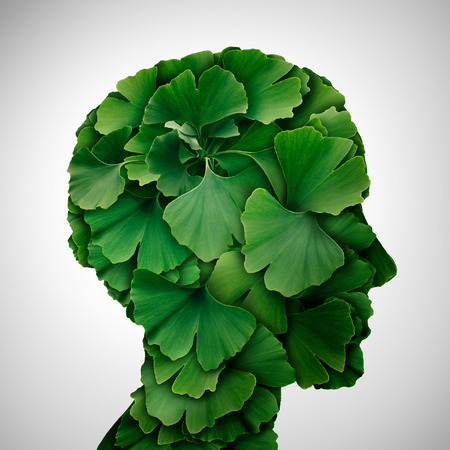 Ginkgo Biloba leaf head as a herbal medicine concept and natural phytotherapy medication symbol for healing as leaves shaped as a human. 写真素材