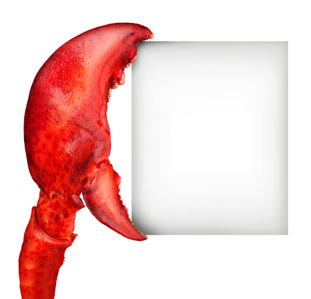 Lobster claw blank sign holding a card banner as a fresh seafood message or shellfish food concept with a red shell crustacean isolated on a white background.