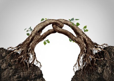sinergia: Símbolo de sinergia y concepto conectado juntos como dos árboles que se fusionan y vinculan en una cadena fuerte como una metáfora de cooperación empresarial en un estilo de ilustración en 3D