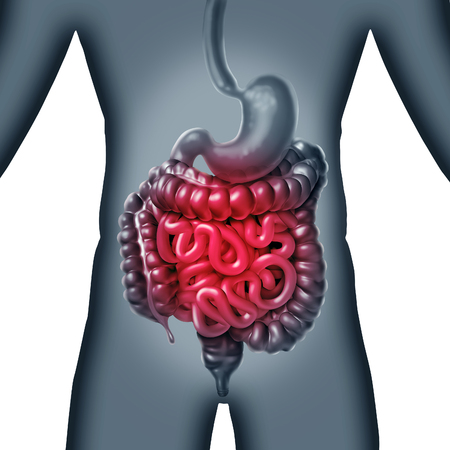 Intestinale en darmpijn en gastrointestinale spijsverteringsontstekingsproblemen als spijsverteringsongemakken of constipatie en infectie als een 3D-illustratie.