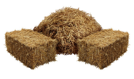 Piles of hay isolated on a white background as an agriculture farm and farming symbol of harvest time with dried grass straw as a mountain of dried grass haystack.