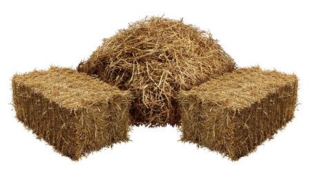 Stapels van hooi geïsoleerd op een witte achtergrond als een landbouw boerderij en landbouw symbool van oogsttijd met gedroogde gras stro als een berg van gedroogde gras hooiberg.