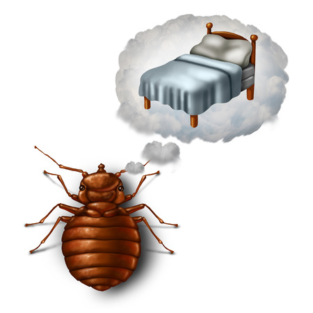 Bed bug dreaming or nightmare and bedbug worry concept as a parasitic insect pest imagining in a dream bubble a pillow and sheets as a symbol and metaphor for sleeping health and hygiene in a 3D illustration style.