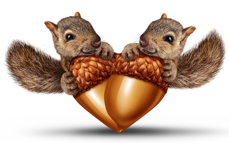 Cute animals in love as two adorable squirrels together with acorns shaped as a heart as a valentine or loving relationship symbol in a 3D illustration style.