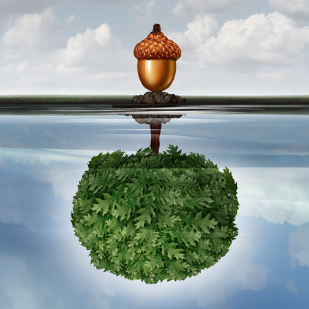 Invest concept as a business success symbol with an acorn with a reflexion in the water of an oak tree with 3D illustration elements. Stock Photo