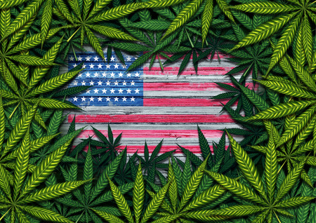 American marijuana and United States cannabis symbol with the USA flag on rustic wood with leaves as a border in a 3D illustration style. 写真素材