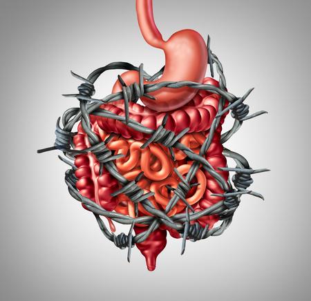 Digestion douloureuse IBS ou syndrome du côlon irritable et douleur intestinale ou problème d'inflammation d'inconfort intestinal ou constipation sous forme de fil de fer barbelé avec des éléments d'illustration 3D. Banque d'images
