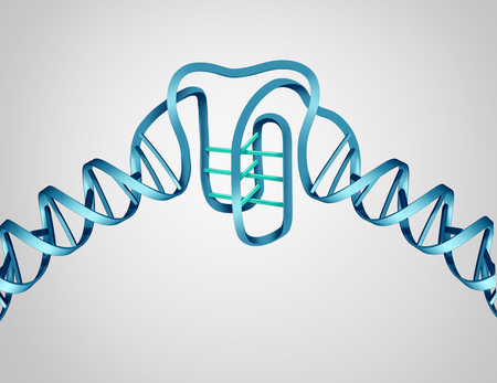 I motif new DNA discovery as a science and biology concept as a molecular structure as a 3D illustration. Stock Photo