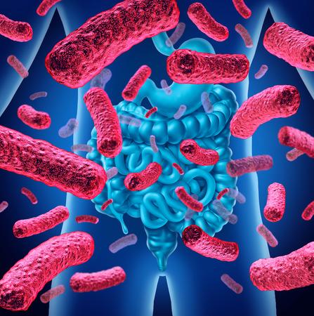 Las bacterias intestinales y la flora intestinal o el concepto de anatomía médica de las bacterias intestinales como una ilustración 3D.